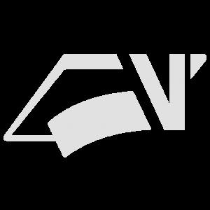 icon_logo_cinza